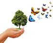 Schutz des Ökosystems