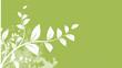 feuillage nature branche arbre en forêt, illustration vectoriel