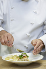 Male chef preparing food, close-up