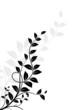 Floral design, décor nature, arbre vectoriel sur fond blanc