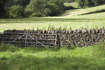 Gate and stone wall between fields