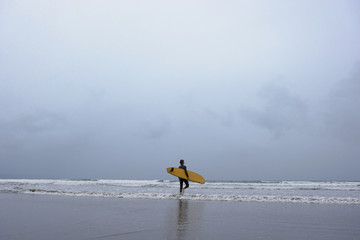 Surfer walking into water, back view