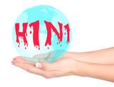 Swine flu virus in hands poster