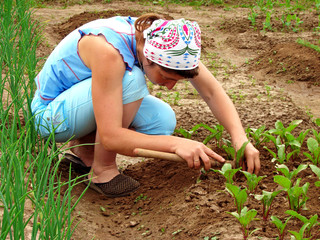 woman hoeing vegetable bed with beetroots