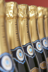 Row of champagne bottles, close-up, selective focus