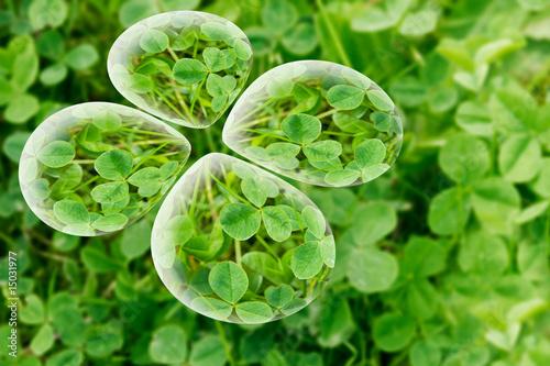 Fond & Texture  Végétal