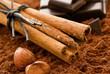 Quadro Zimtstangen mit Kakao uns Schokolade