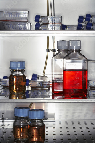 Bottles and containers in laboratory fridge