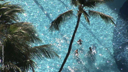 Overhead shot of tourists in a tropical pool, Honolulu, Hawaii