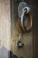 Japan, Nara, Todai-ji Temple, Door knobs of shrine, close-up