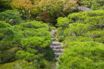 Kyoto, Japan, Okochi Denjiro, stone steps in garden