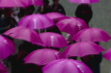 Kapan, Nikko, Tosho-gu Shinto shrine, People under purple umbrellas, elevated view