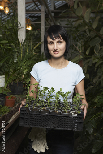 Greenhouse Worker with Tray of Potted Plants
