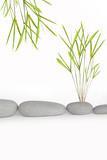 Zen Simplicity poster