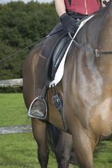 Female horseback rider sitting on brown horse, cropped