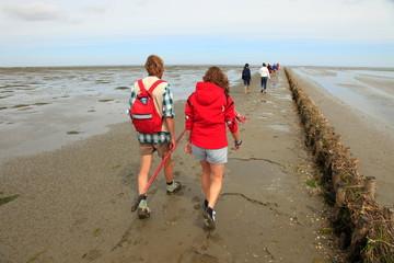 UNESCO Weltnaturerbe, Nordsee Wattenmeer, Wattwanderung