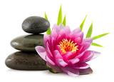 Composition zen, pierres, lotus et bambou - 15079554