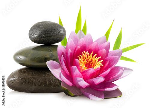 Composition zen, pierres, lotus et bambou