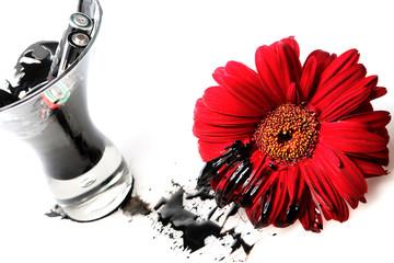 gerbera vermelha manchada de preto por pilhas