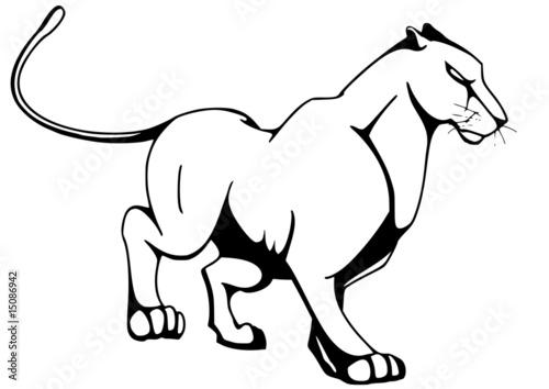 malvorlage panther  coloring and malvorlagan