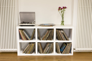 Shelf with vinyl records