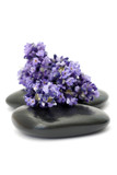 Fototapety lavender and massage stones
