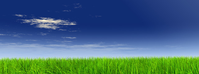 high resolution 3d green grass over a blue sky