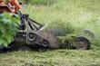 Taglio dell erba in un campo