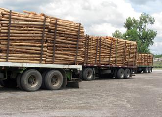 Trucks and trunks