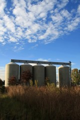 Storage Silos for Grain