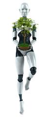 Robot avec une plante