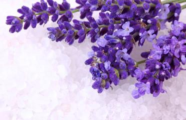 Fresh lavender and bath salt
