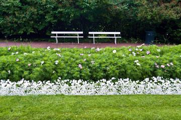 Bänke im Osloer Slotta Park