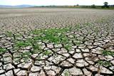 global warming - cracked earth