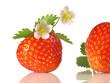 Erdbeere mit Erdbeerblüte