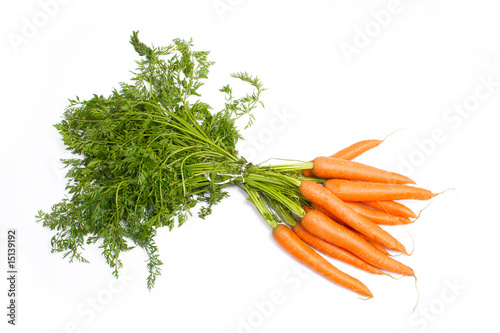 Tuft of carrots