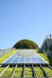 Garden of modern, ecological building. - 15146933