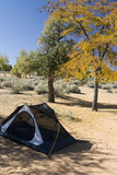 Campsite with Tent in Desert poster