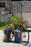 Fototapety bicycle, Provence Departement, France
