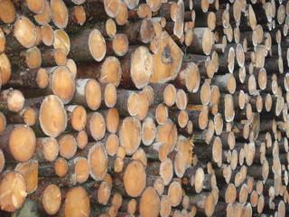 Holzstapel am Sägewerk