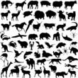 animal mix illustration vector silhouettes