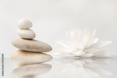 wellness still life: pebbles and white lily, reflection