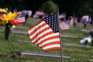 Memorial Veteran's Cemetery
