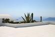 Santorin Kaktus