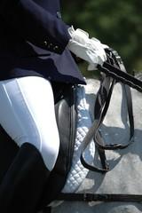 harness and saddle