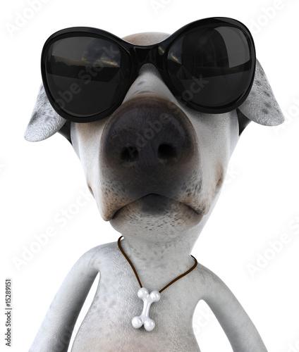 chien et lunettes de soleil de julien tromeur photo libre. Black Bedroom Furniture Sets. Home Design Ideas