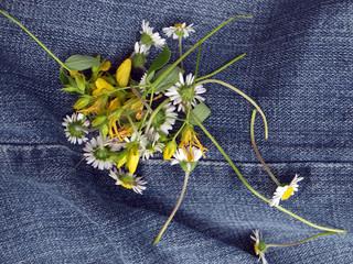 cueillette de fleurs sauvages