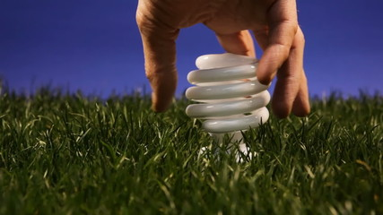 Compact fluorescent light bulb, grass