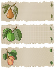 Fruit Banners APP