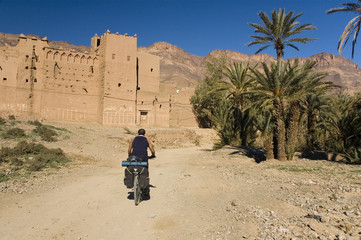 Cyclist in the draa Valley, Morocco